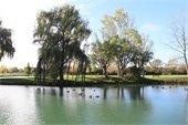 Heritage Park Ponds