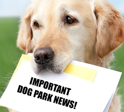 Important Dog Park News Graphic with photo of dog